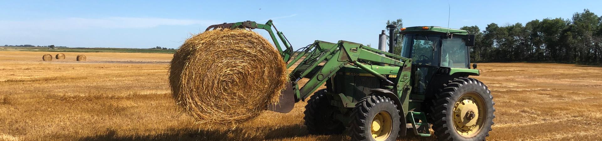 hay field farm