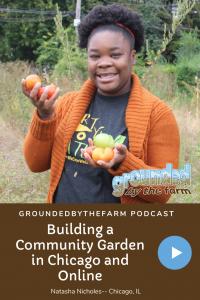 Building a community garden in Chicago & Online