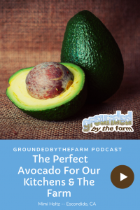perfect avocado podcast episode