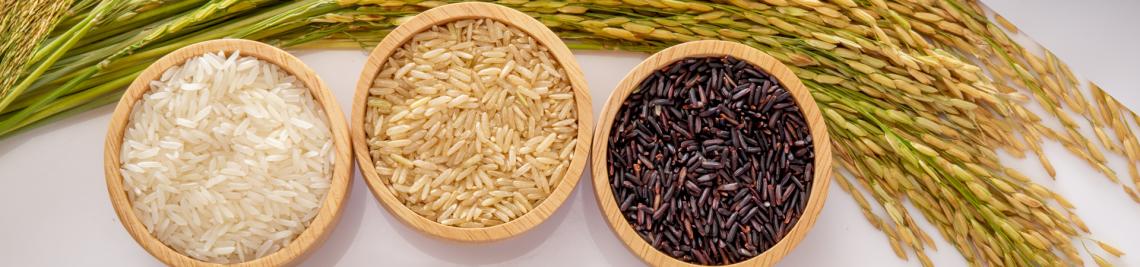 rice farmer podcast header