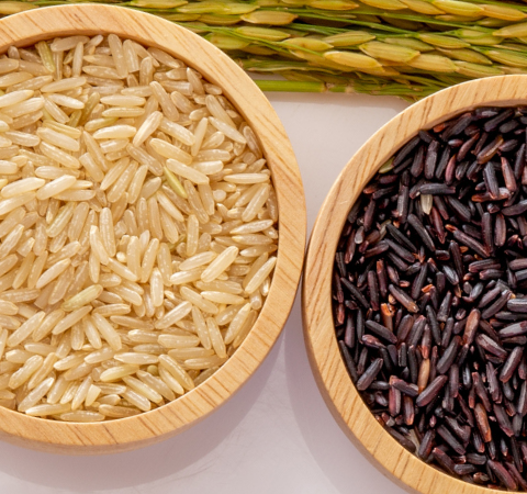 A Rice Farmer Who Loves Farming, Food & YouTube — Meet Matthew Sligar