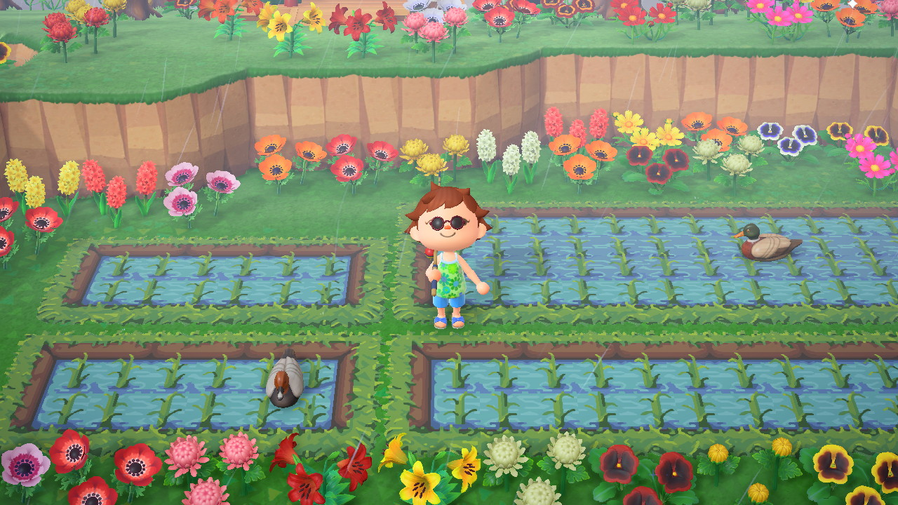 Animal Crossing Farming Yep Reality Dreams At Play Grounded By The Farm