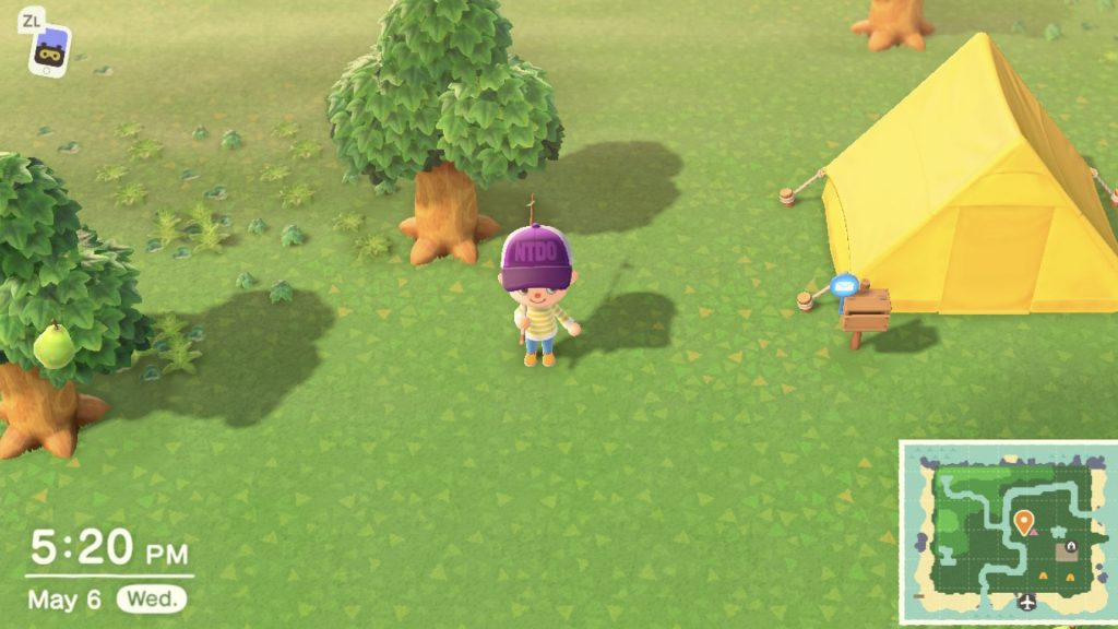 Animal Crossing farm experience