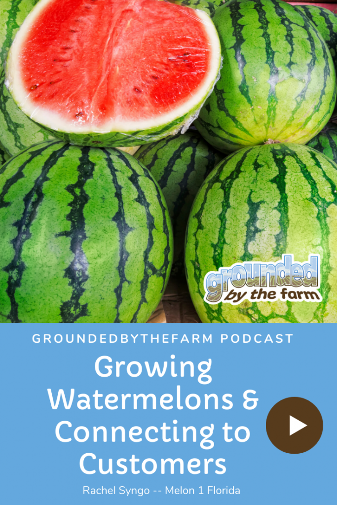 growing watermelons podcast episode