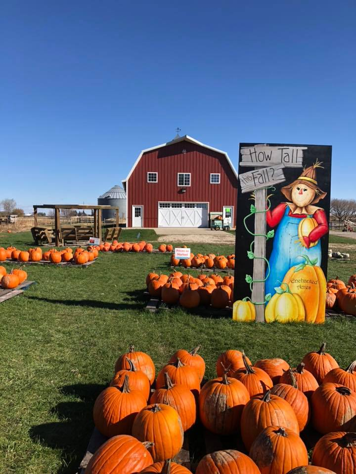 pumpkin farm enchanted acres