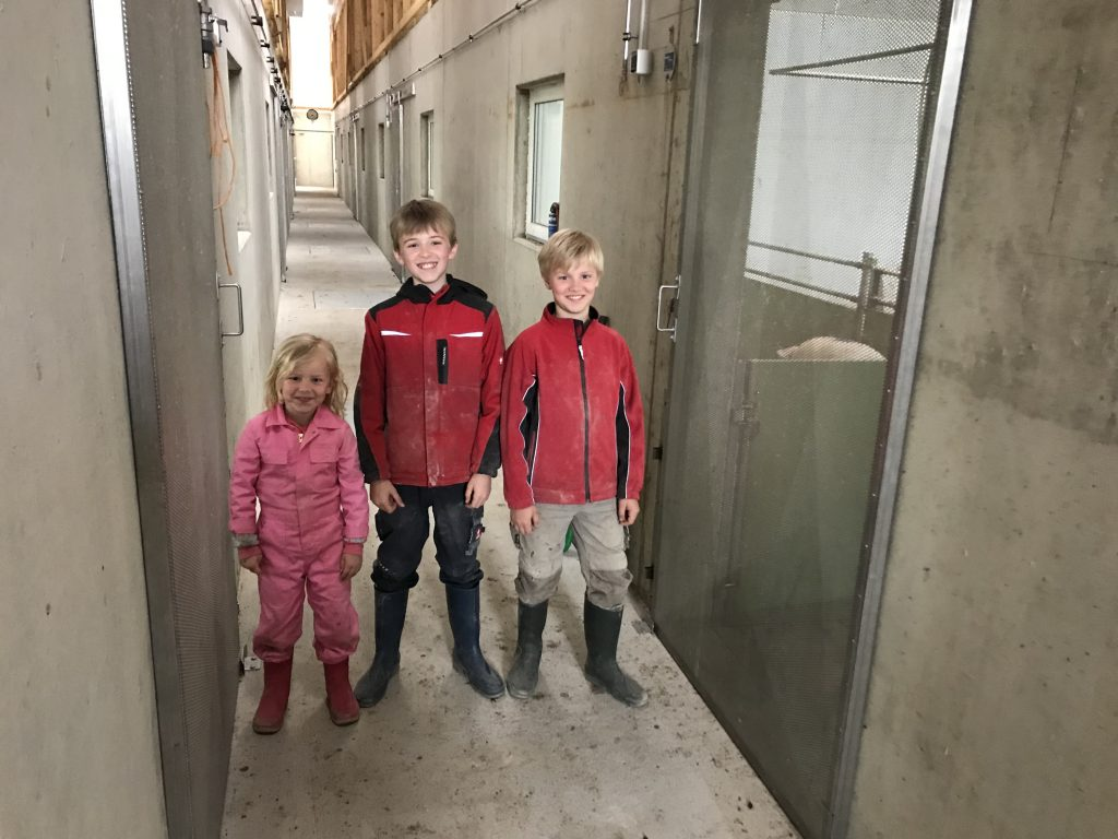 pig farming is a family business