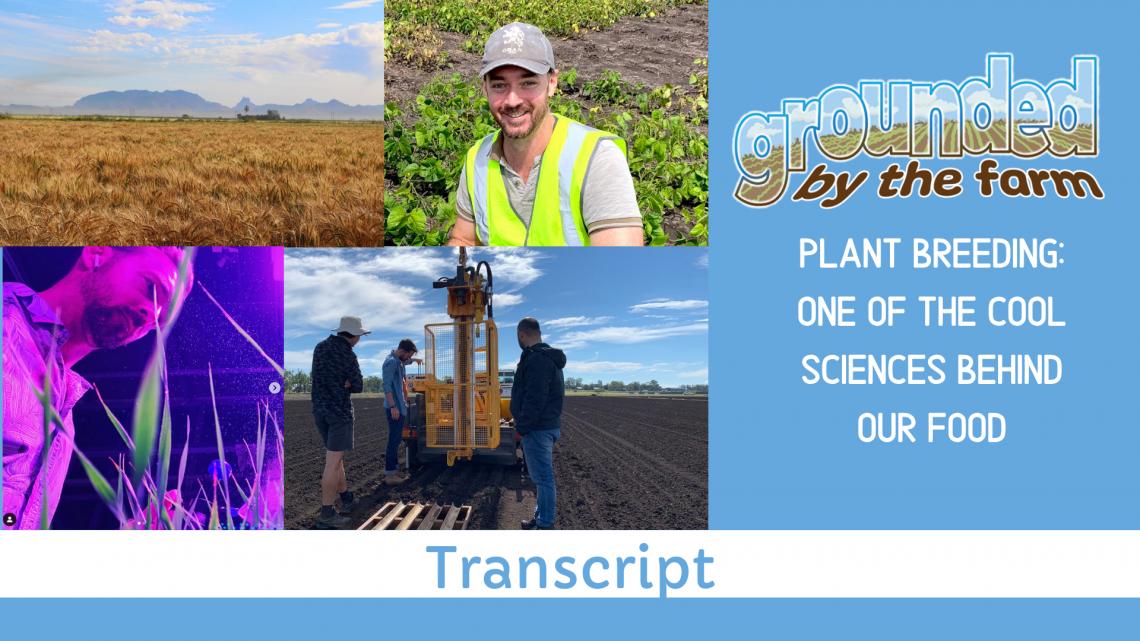 Plant breeder transcript