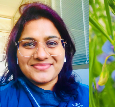 Growing A Plant-Based Protein that is Humble Yet Powerful — Convo with Dr. Priyanka Gupta